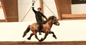 Riding lessons and excursions